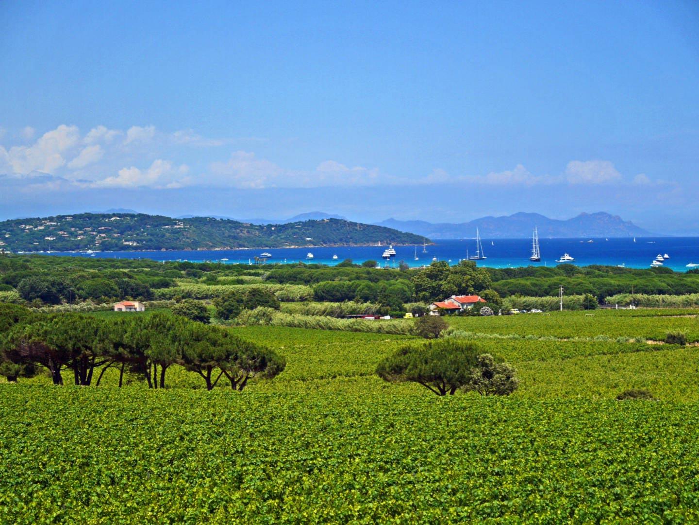 Balade vigneronne dans le golfe office de tourisme et de la culture ramatuelle - Office tourisme ramatuelle ...